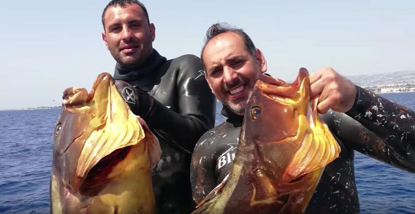 охота Кипр