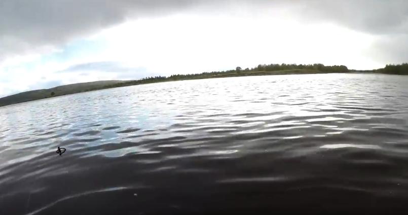 озеро Имандра подводная охота