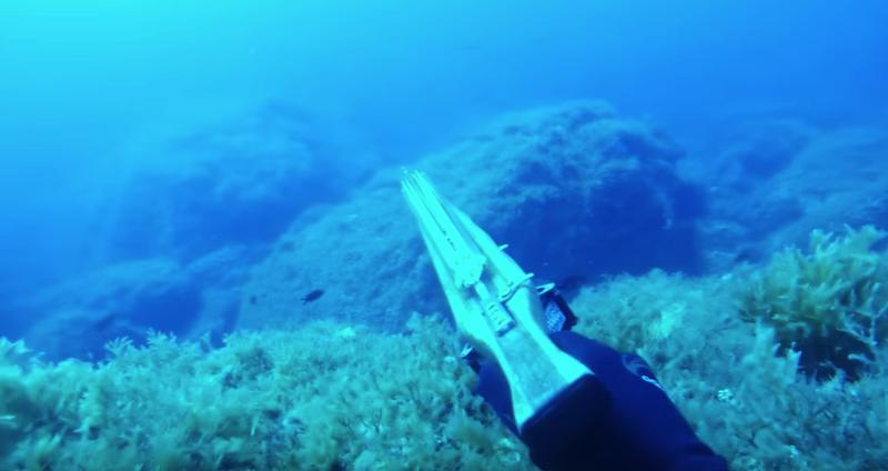 подводная охота в Тунисе