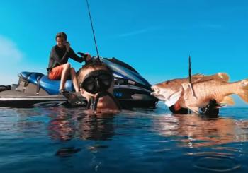 Увлекательная подводная охота на морского окуня в Мексике