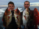 Виды рыб для подводной охоты в Австралии