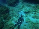 Подводная охота на барракуду в Очо-Риос, Ямайка